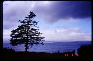 Storm Passing Over Bay of Fundy