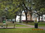 Typical Savannah Square