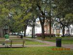 Typical Savannah Square