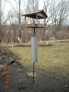 Bird Feeder With Squirrell Guard