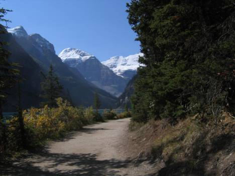 Trail to the foot of the Glacier