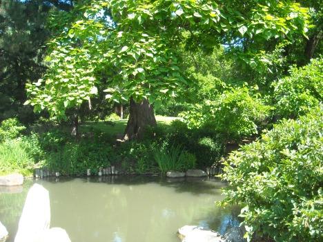 Osaka Gardens Tour