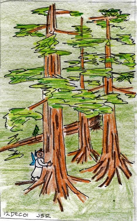 Tree-Hug0052_edited