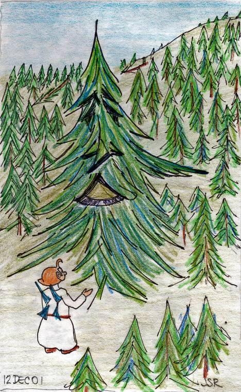 tree-wrap-A0045_edited