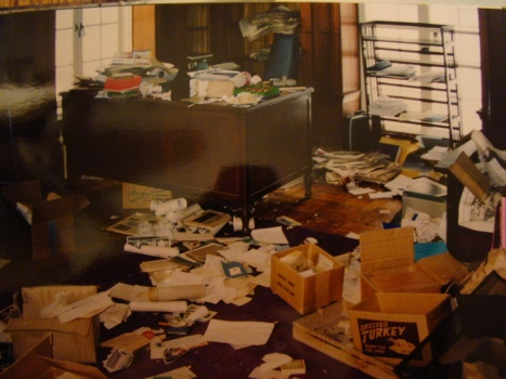 Raccoon-damage-in-office-space..jpg