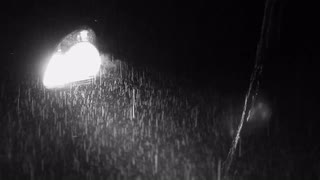 heavy-rain-at-night-with-car-headlight-tree-in-the-foreground-black-and-white_vov8ur3ig__S0000.jpg