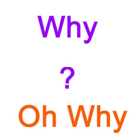 ventureneer-why.jpg