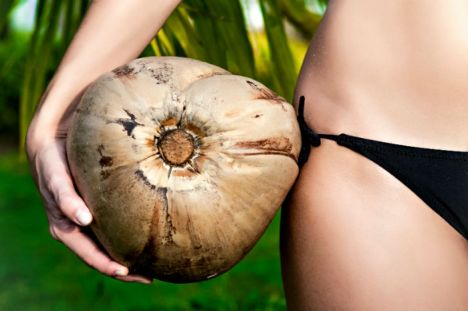 investing-in-coconuts-plantation.jpg