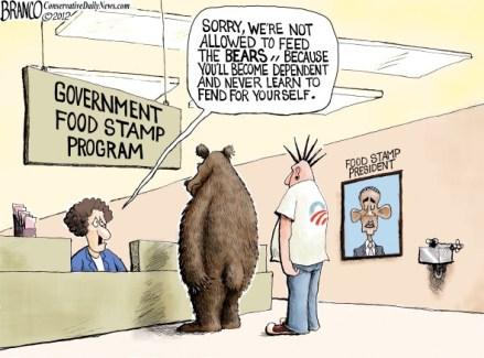 Bear-Necessities.jpg