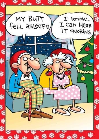 05de5303c65033dd9710e6a8bd7c43bb--christmas-humor-merry-christmas